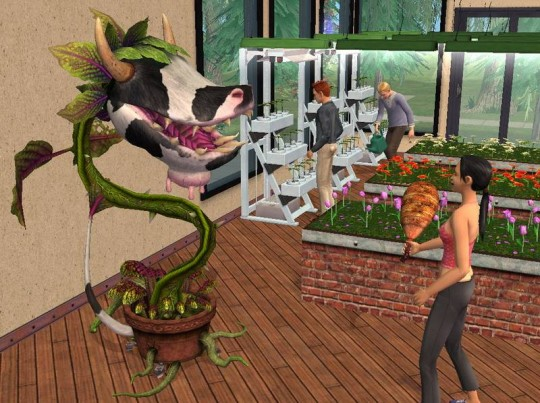 The Sims 2: Egyetem