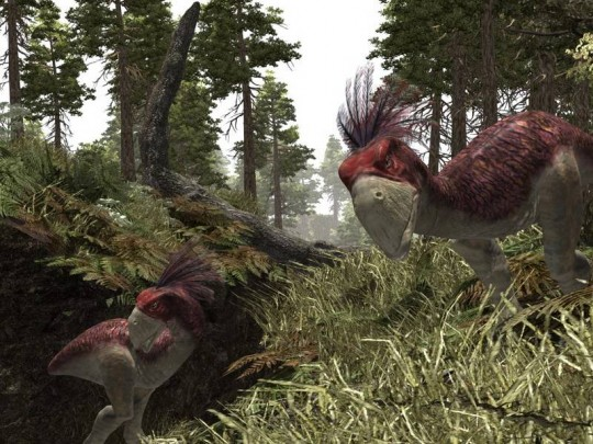 Gothic III E3-as infók