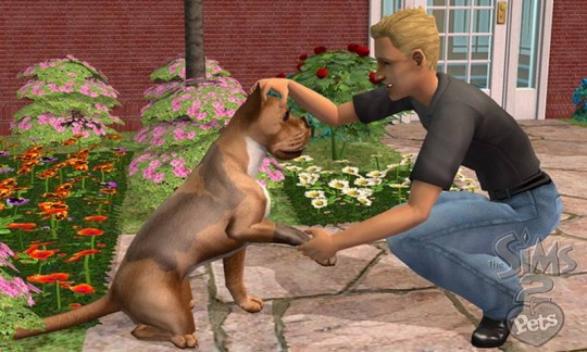 The Sims 2: Pets patch