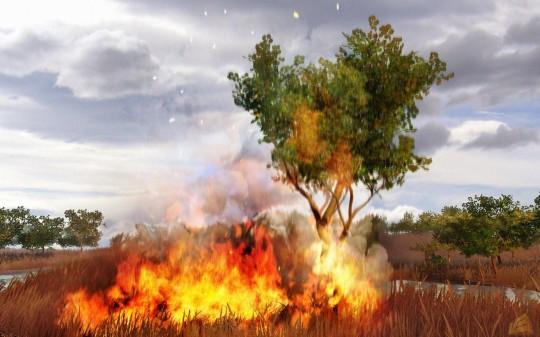 Far Cry 2 - az első képek