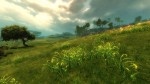 Bemutatták a Guild Wars 2-t