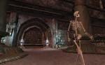 EverQuest II: Sentinel's Fate képek