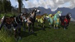 Lord of The Rings Online: Riders of Rohan - képcsokor