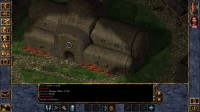 Megjelent a Baldur's Gate: Enhanced Edition