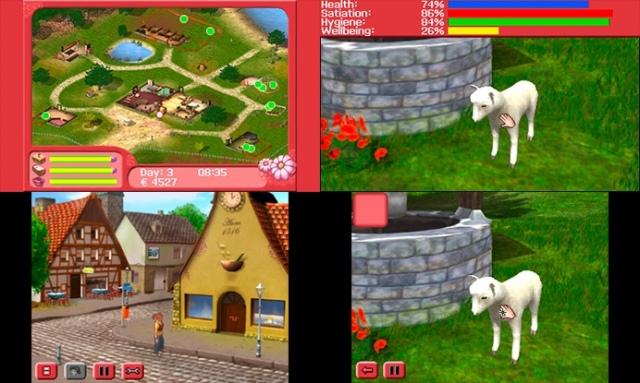 My Vet Practice 3D: In the Country (Nintendo 3DS)